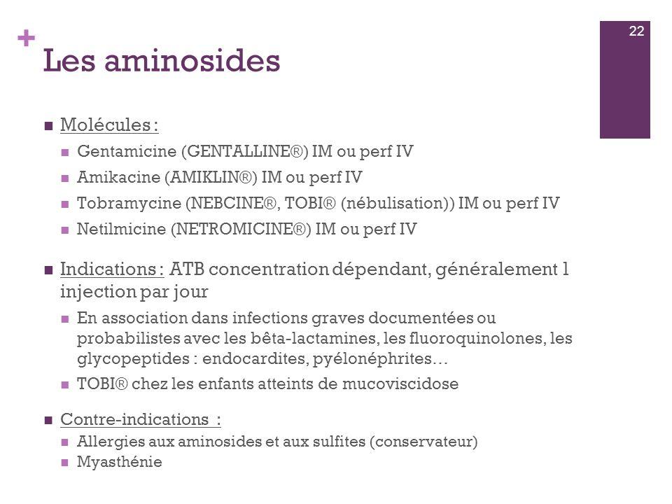 + Les aminosides  Molécules :  Gentamicine (GENTALLINE®) IM ou perf IV  Amikacine (AMIKLIN®) IM ou perf IV  Tobramycine (NEBCINE®, TOBI® (nébulisa