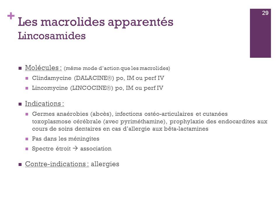 + Les macrolides apparentés Lincosamides  Molécules : (même mode d'action que les macrolides)  Clindamycine (DALACINE®) po, IM ou perf IV  Lincomyc