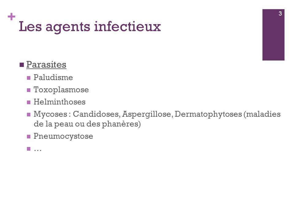 + Les agents infectieux  Parasites  Paludisme  Toxoplasmose  Helminthoses  Mycoses : Candidoses, Aspergillose, Dermatophytoses (maladies de la pe