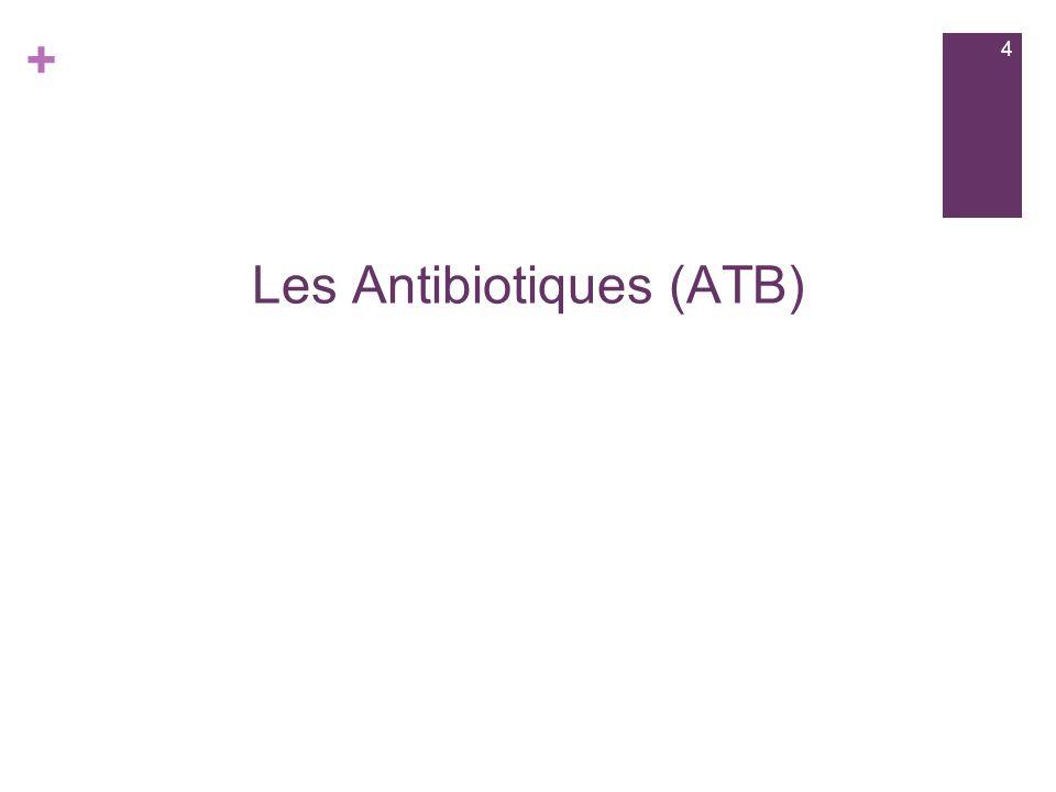 + Les Antibiotiques (ATB) 4