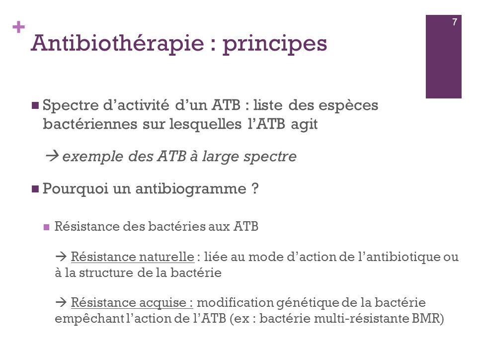 + Antibiothérapie : principes  Spectre d'activité d'un ATB : liste des espèces bactériennes sur lesquelles l'ATB agit  exemple des ATB à large spect