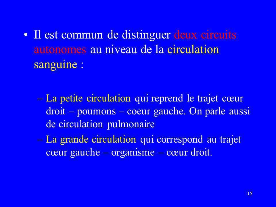 15 •Il est commun de distinguer deux circuits autonomes au niveau de la circulation sanguine : –La petite circulation qui reprend le trajet cœur droit