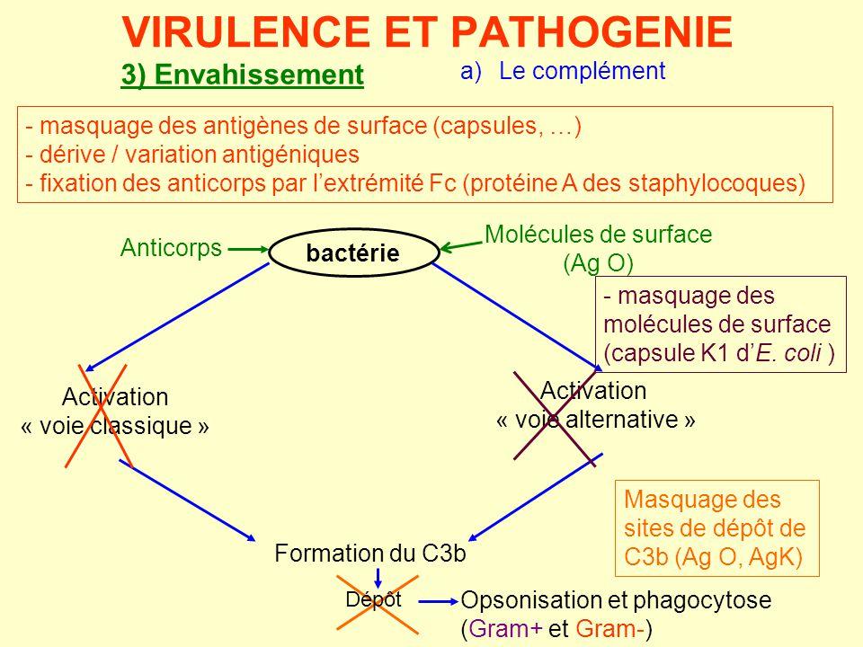 3) Envahissement a) Le complément bactérie Activation « voie alternative » Molécules de surface (Ag O) Activation « voie classique » Formation du C3b