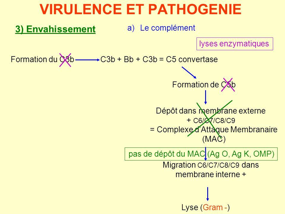 Formation du C3b VIRULENCE ET PATHOGENIE Lyse (Gram -) Formation de C5b Dépôt dans membrane externe + C6/C7/C8/C9 = Complexe d'Attaque Membranaire (MA