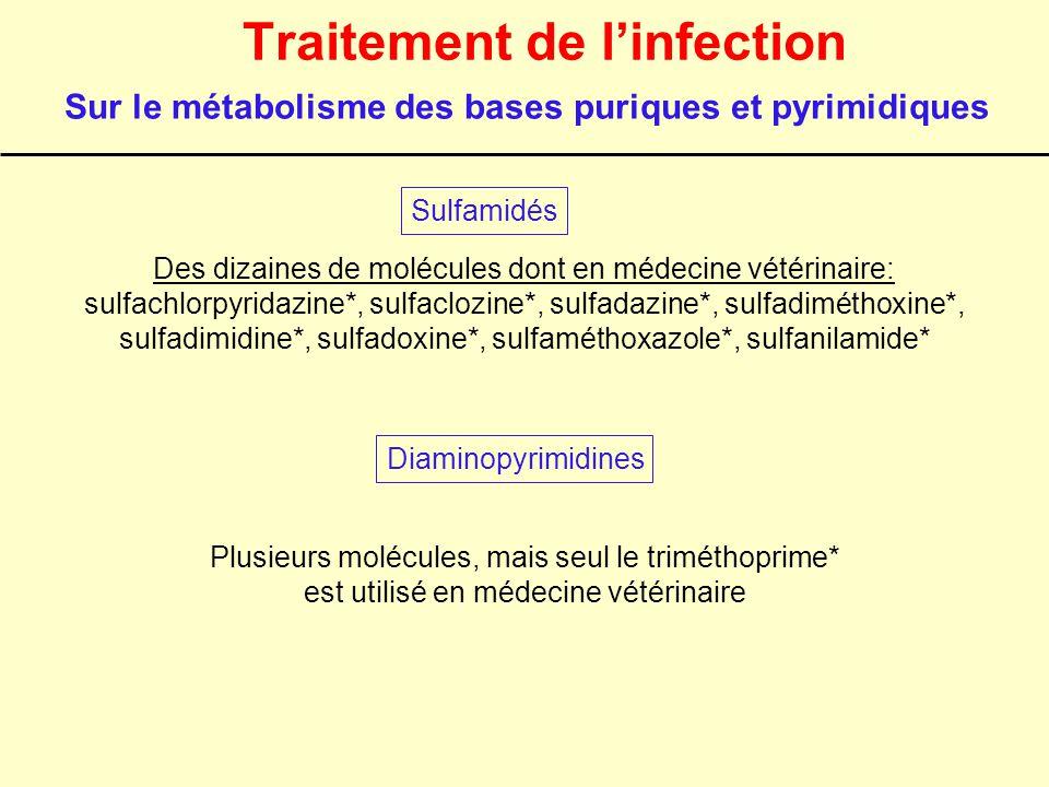 Traitement de l'infection Des dizaines de molécules dont en médecine vétérinaire: sulfachlorpyridazine*, sulfaclozine*, sulfadazine*, sulfadiméthoxine
