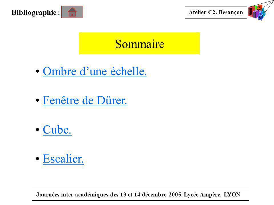 Atelier C2. Besançon Journées inter académiques des 13 et 14 décembre 2005. Lycée Ampère. LYON Sommaire • Ombre d'une échelle.Ombre d'une échelle. • F