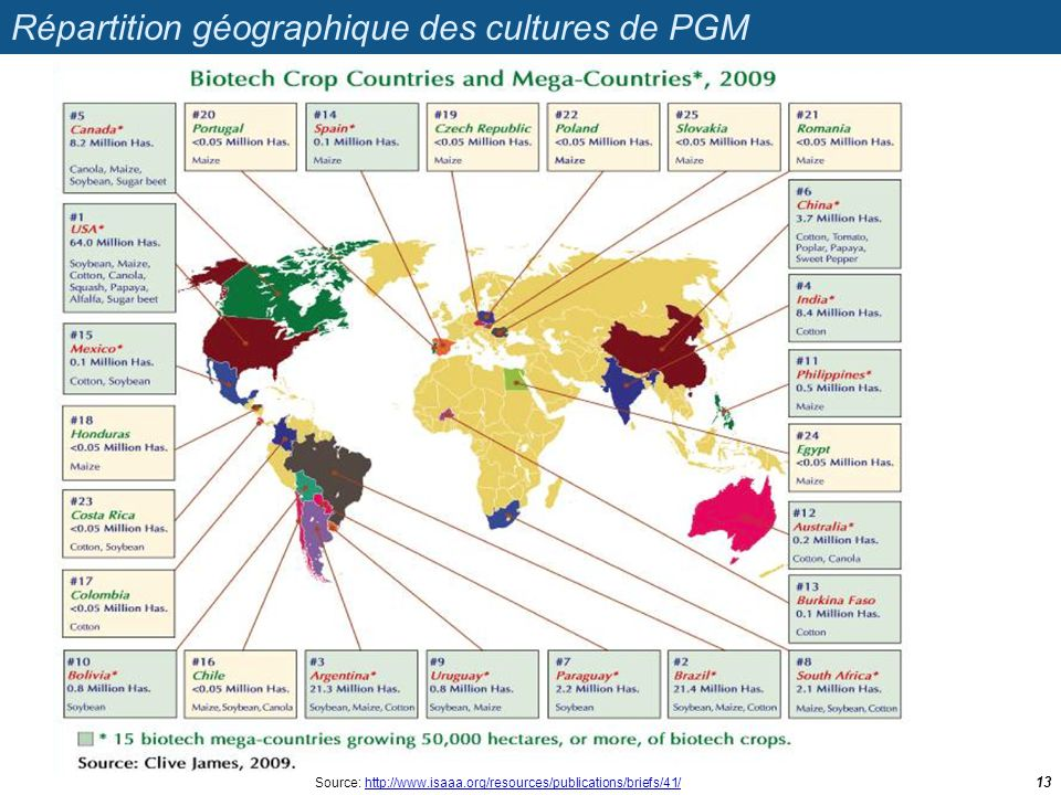 Répartition géographique des cultures de PGM 13 Source: http://www.isaaa.org/resources/publications/briefs/41/http://www.isaaa.org/resources/publicati