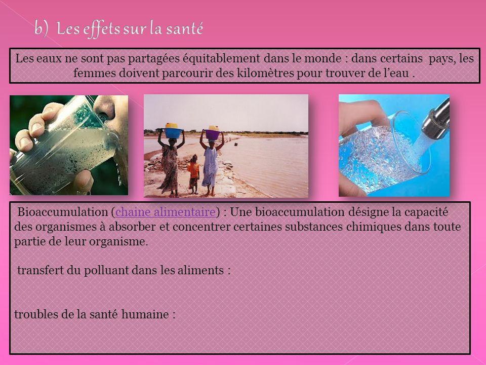 Bioaccumulation (chaine alimentaire) : Une bioaccumulation désigne la capacité des organismes à absorber et concentrer certaines substances chimiques