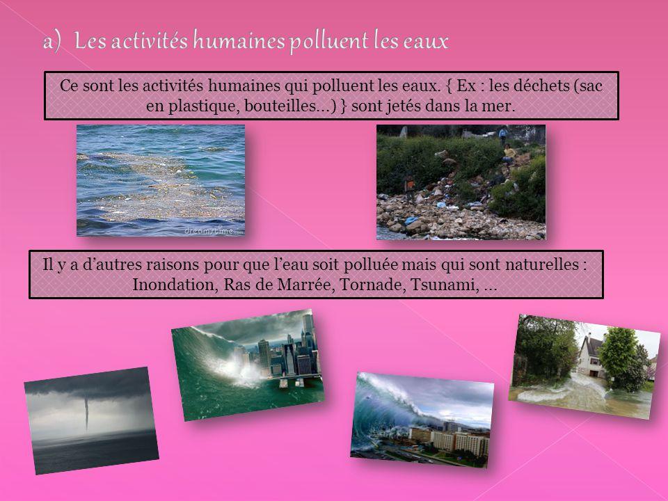 Ce sont les activités humaines qui polluent les eaux. { Ex : les déchets (sac en plastique, bouteilles...) } sont jetés dans la mer. Il y a d'autres r