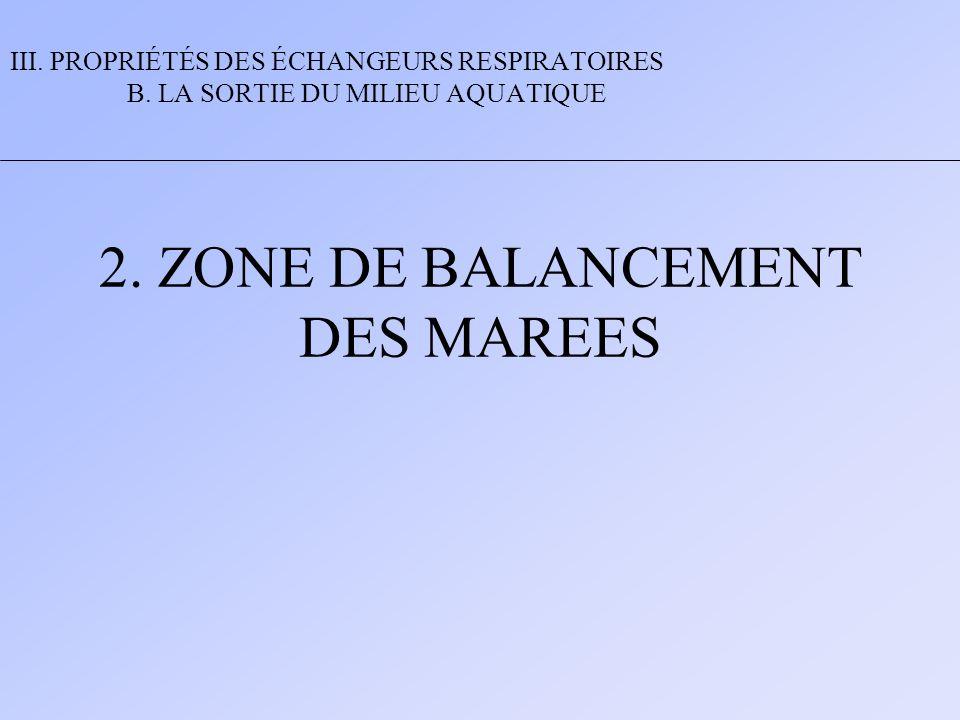 2. ZONE DE BALANCEMENT DES MAREES III. PROPRIÉTÉS DES ÉCHANGEURS RESPIRATOIRES B. LA SORTIE DU MILIEU AQUATIQUE