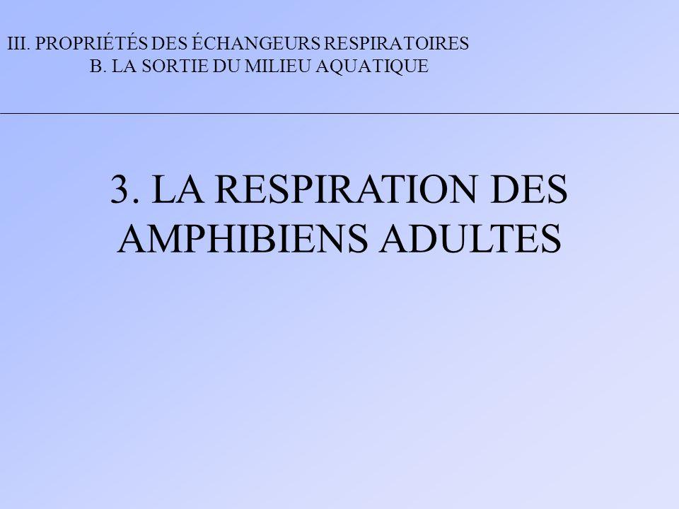 3. LA RESPIRATION DES AMPHIBIENS ADULTES III. PROPRIÉTÉS DES ÉCHANGEURS RESPIRATOIRES B. LA SORTIE DU MILIEU AQUATIQUE