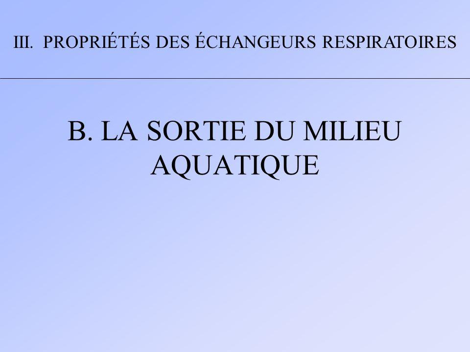 1.LA RESPIRATION AERIENNE DES POISSONS III. PROPRIÉTÉS DES ÉCHANGEURS RESPIRATOIRES B.