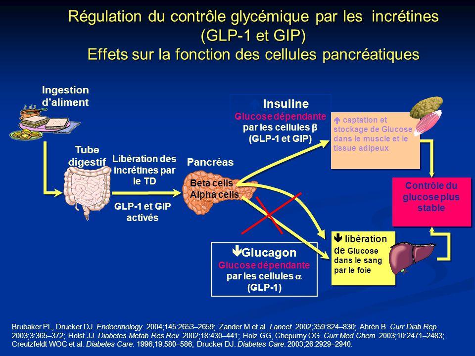  Insuline Glucose dépendante par les cellules β (GLP-1 et GIP) GLP-1 et GIP activés Libération des incrétines par le TD Contrôle du glucose plus stab