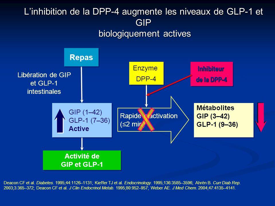 L'inhibition de la DPP-4 augmente les niveaux de GLP-1 et GIP biologiquement actives Libération de GIP et GLP-1 intestinales Activité de GIP et GLP-1