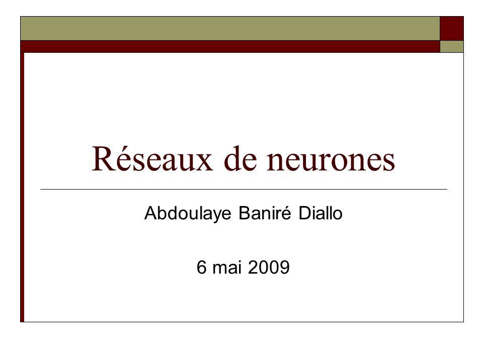 Réseaux de neurones Abdoulaye Baniré Diallo 6 mai 2009