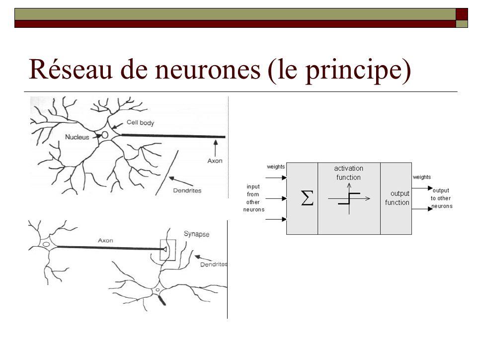 Le neurone artificiel: perceptron  t j = seuil de l'unité j  y i = signal d'entrée i  w ij = poids du signal y i dans le neuron j  f j = fonction de transfert du neurone j  Frank Rosenblatt (1958)