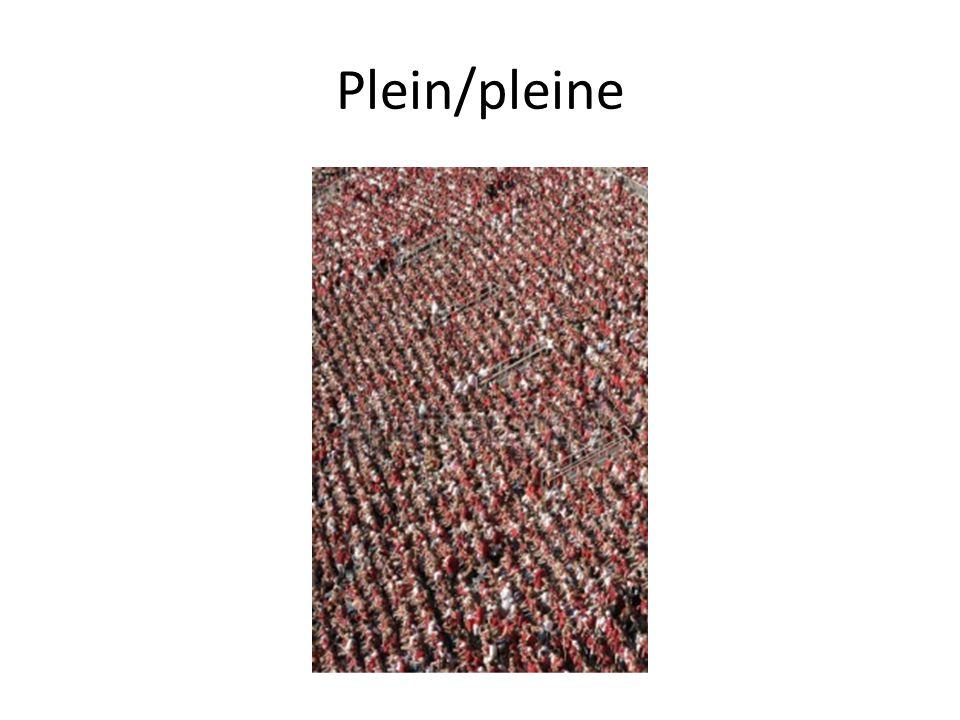 Plein/pleine