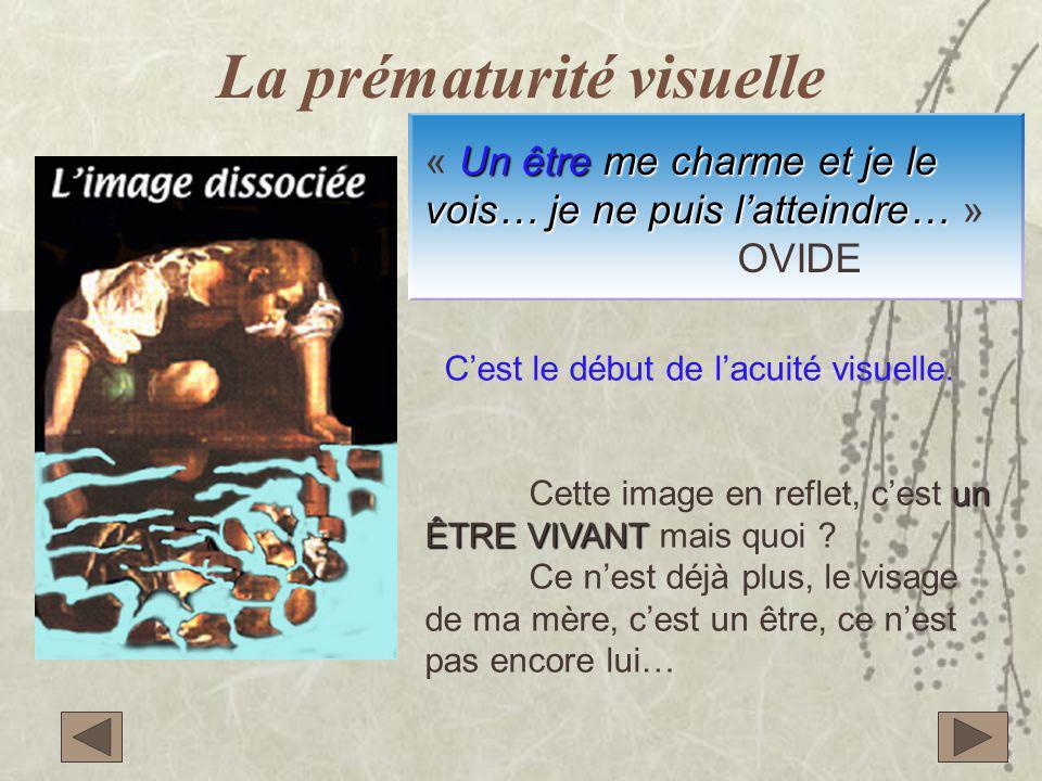 La prématurité visuelle C'est le début de l'acuité visuelle. un ÊTRE VIVANT Cette image en reflet, c'est un ÊTRE VIVANT mais quoi ? Ce n'est déjà plus