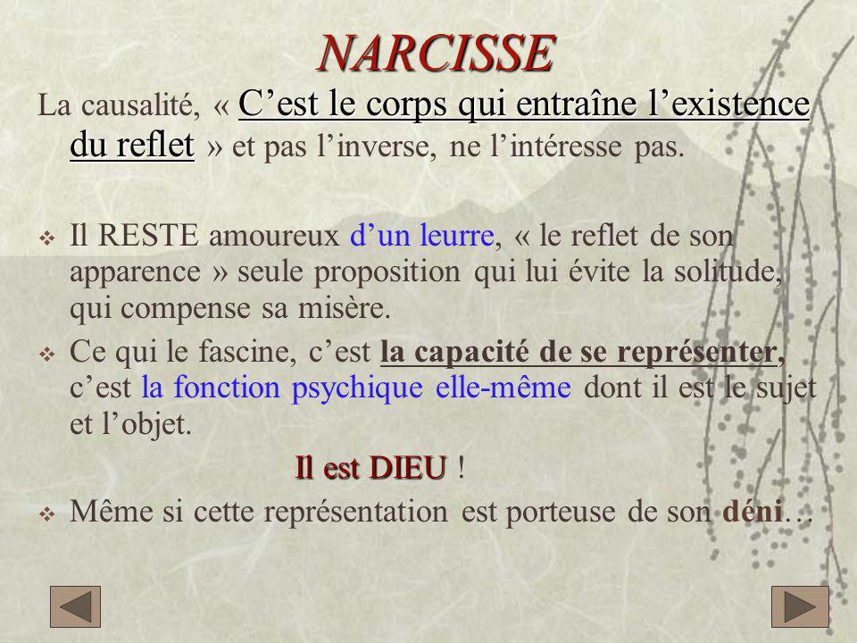 NARCISSE C'est le corps qui entraîne l'existence du reflet La causalité, « C'est le corps qui entraîne l'existence du reflet » et pas l'inverse, ne l'intéresse pas.