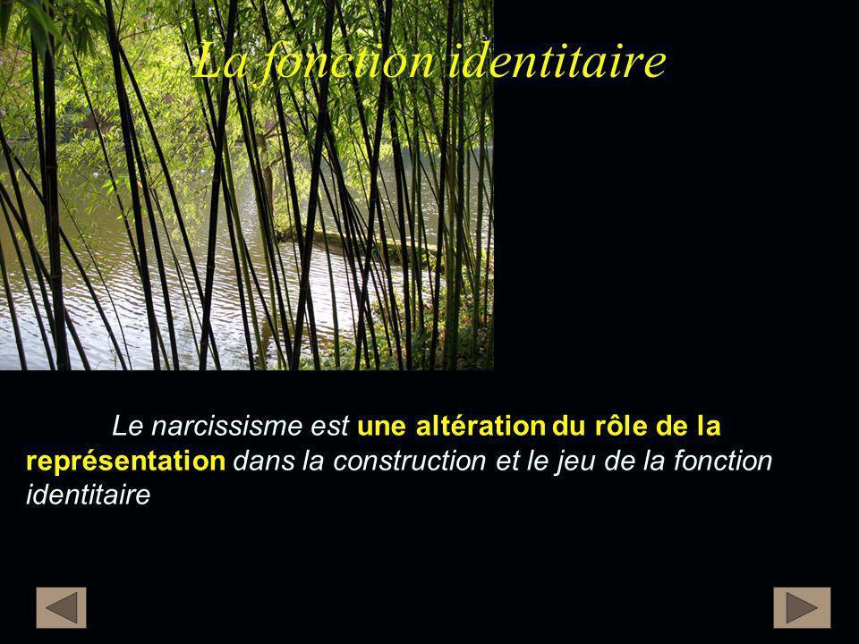 La fonction identitaire Le narcissisme est une altération du rôle de la représentation dans la construction et le jeu de la fonction identitaire