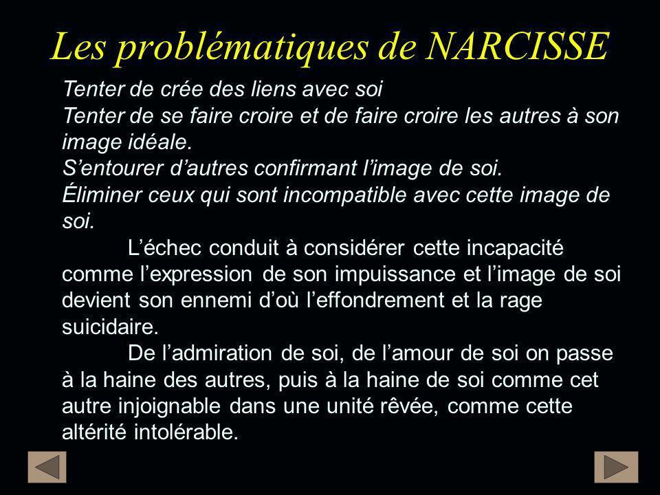 Les problématiques de NARCISSE Tenter de crée des liens avec soi Tenter de se faire croire et de faire croire les autres à son image idéale. S'entoure