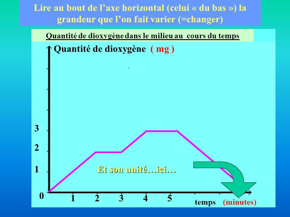 Temps ( minutes) Quantité de dioxygène( mg ) Lire au bout de l'axe vertical (celui « du haut ») la grandeur que l'on étudie Et son unité…ici… 12345 1 2 3 0 Quantité de dioxygène dans le milieu au cours du temps