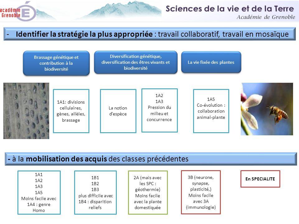 Diversification génétique, diversification des êtres vivants et biodiversité La vie fixée des plantes 1A2 1A3 Pression du milieu et concurrence 1A5 Co
