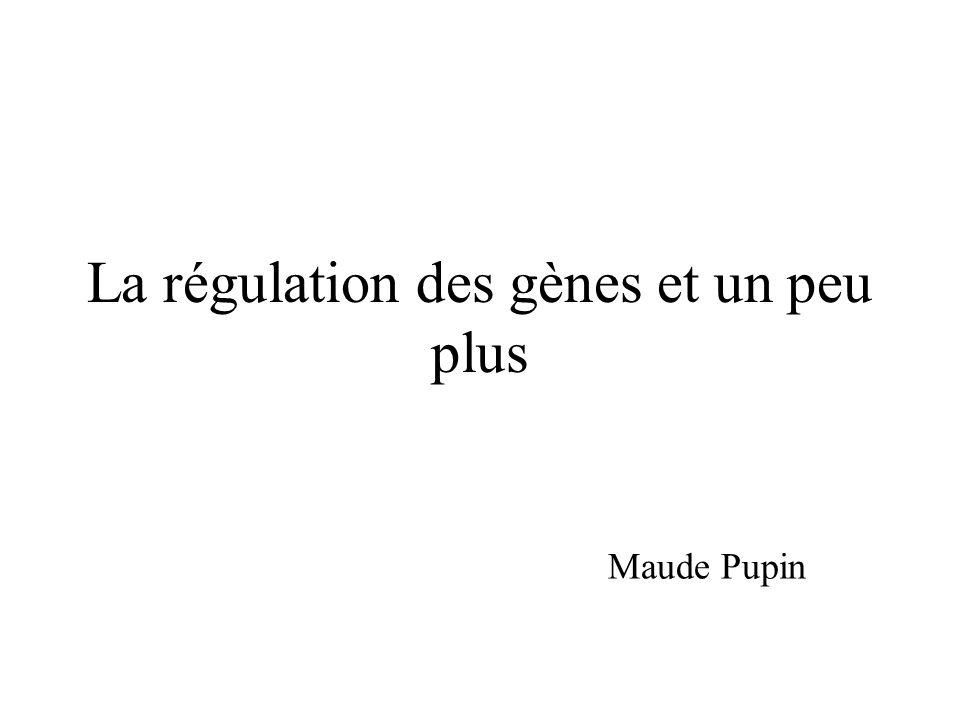 La régulation des gènes et un peu plus Maude Pupin