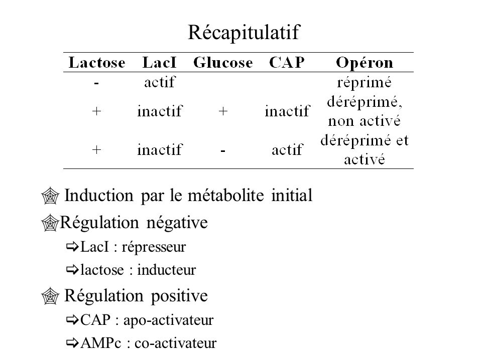 Récapitulatif  Induction par le métabolite initial  Régulation négative  LacI : répresseur  lactose : inducteur  Régulation positive  CAP : apo-activateur  AMPc : co-activateur
