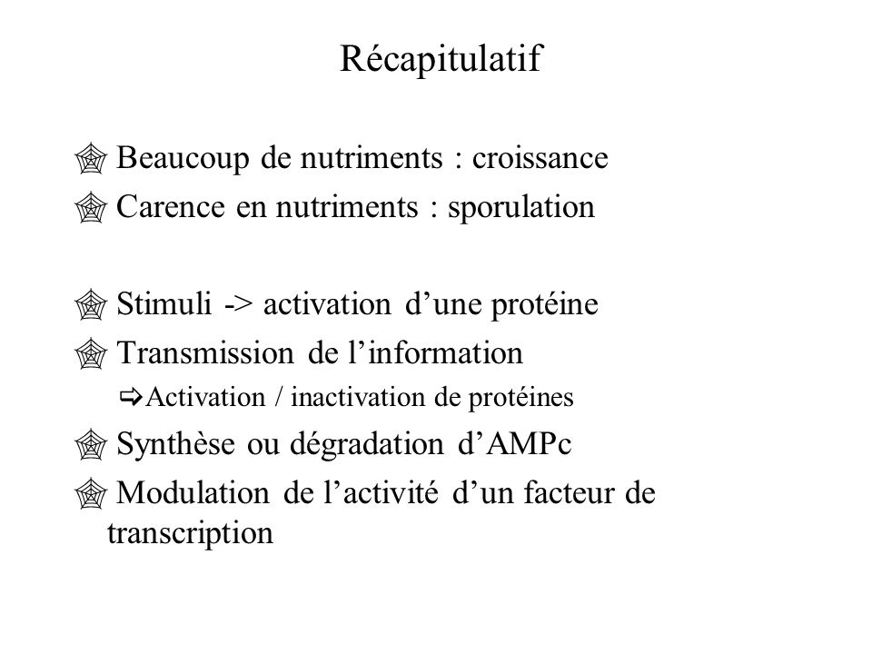 Récapitulatif  Beaucoup de nutriments : croissance  Carence en nutriments : sporulation  Stimuli -> activation d'une protéine  Transmission de l'i
