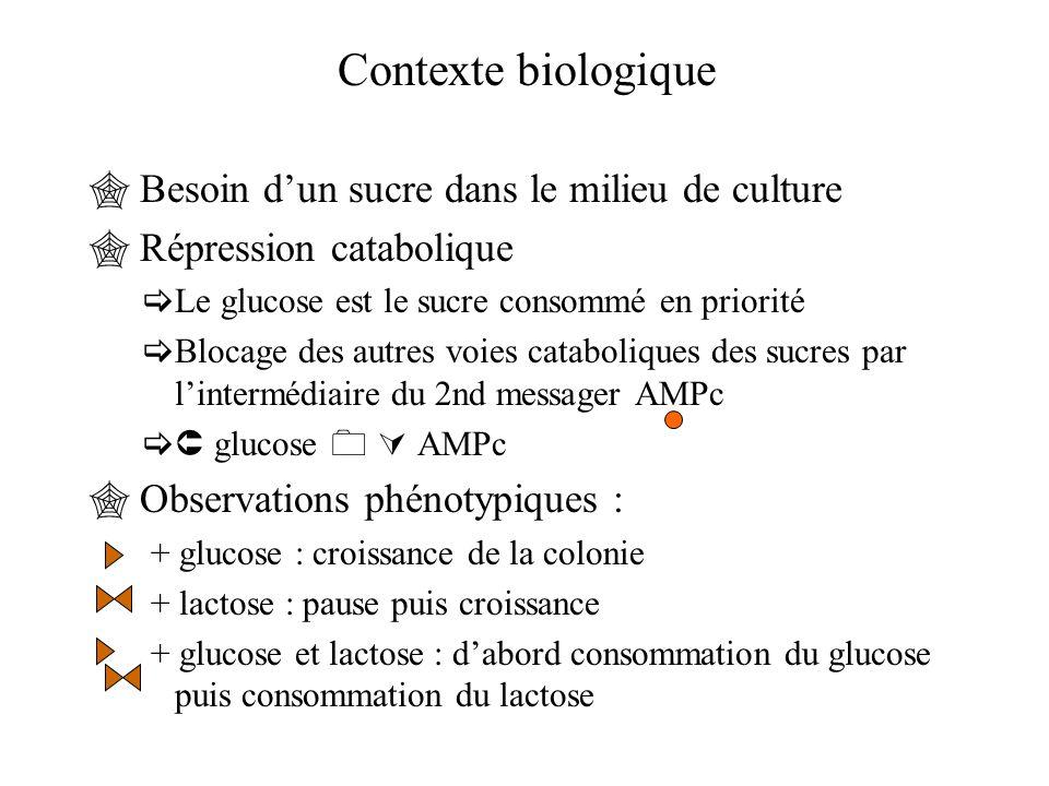  Besoin d'un sucre dans le milieu de culture  Répression catabolique  Le glucose est le sucre consommé en priorité  Blocage des autres voies catab