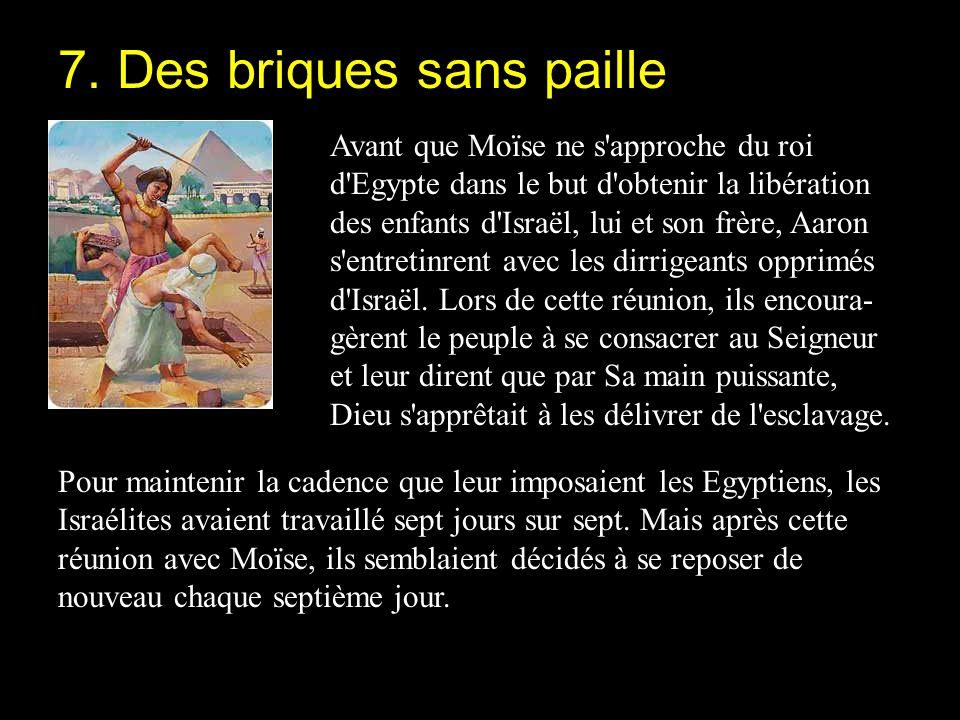 Avant que Moïse ne s'approche du roi d'Egypte dans le but d'obtenir la libération des enfants d'Israël, lui et son frère, Aaron s'entretinrent avec le