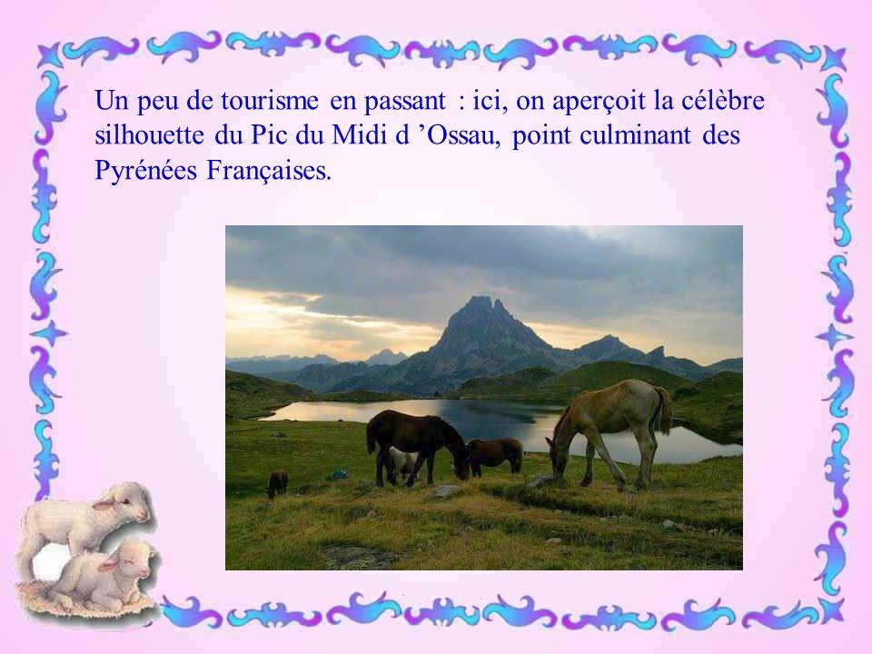 Un peu de tourisme en passant : ici, on aperçoit la célèbre silhouette du Pic du Midi d 'Ossau, point culminant des Pyrénées Françaises.