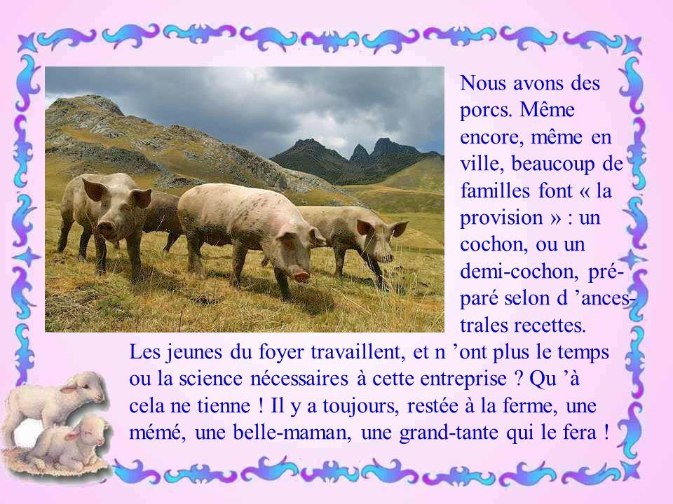 Nous avons les vaches. Notre célèbre Blonde d 'Aquitaine a été primée au Salon de l 'Agri- culture à Paris. Elle donne une très bonne viande, mais c '