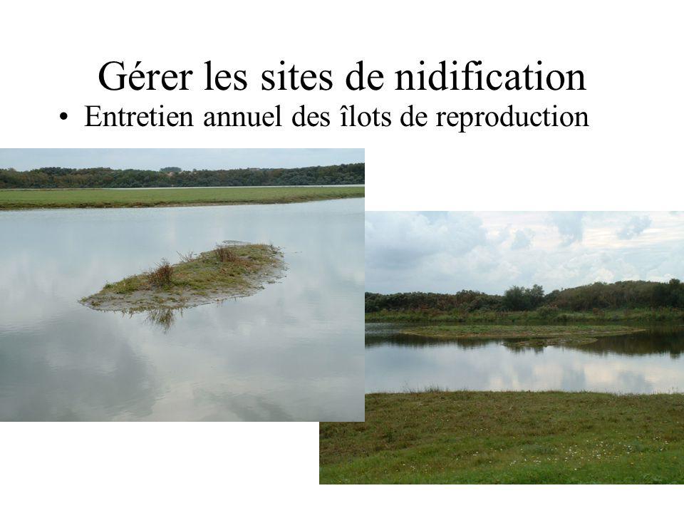 Gérer les prédateurs •Clôtures anti-sangliers et anti-renards •Suppression de l'îlot de reproduction des goélands argentés