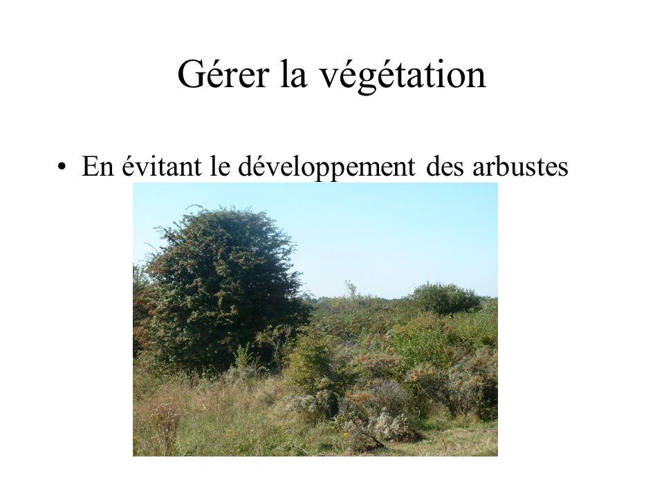 Gérer les sites de nidification •Entretien annuel des îlots de reproduction
