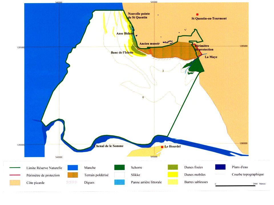  Créée par décret ministériel le 21 mars 1994  Elle couvre une superficie d'environ 3 000 Ha –2800 ha de Domaine Public Maritime –200 ha de milieux terrestres, propriété du Conservatoire du Littoral qui correspond au Parc Ornithologique du Marquenterre La réserve naturelle de la baie de Somme