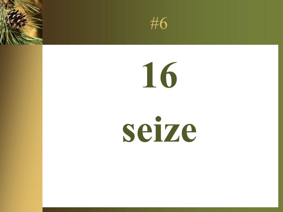 #6 16 seize