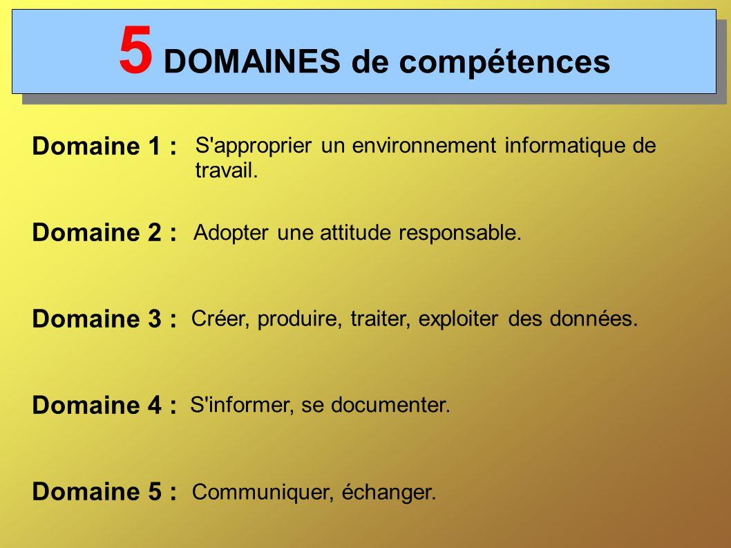 5 DOMAINES de compétences Domaine 1 : Domaine 2 : Domaine 3 : Domaine 4 : Domaine 5 : S approprier un environnement informatique de travail.