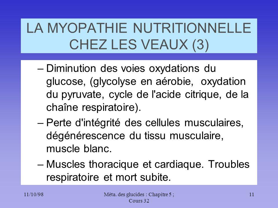 11/10/9811Méta. des glucides : Chapitre 5 ; Cours 32 LA MYOPATHIE NUTRITIONNELLE CHEZ LES VEAUX (3) –Diminution des voies oxydations du glucose, (glyc