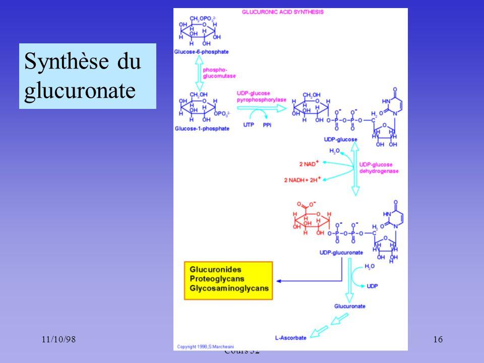 11/10/9816Méta. des glucides : Chapitre 5 ; Cours 32 Synthèse du glucuronate