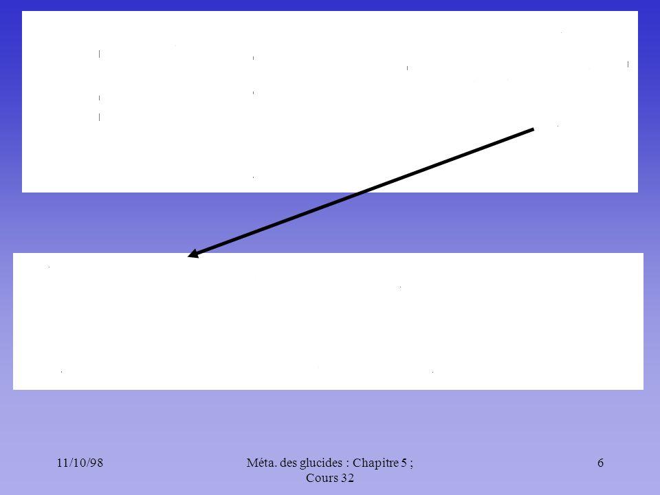 11/10/987Méta.des glucides : Chapitre 5 ; Cours 32 Système antioxydant Voie pentoses Vit.