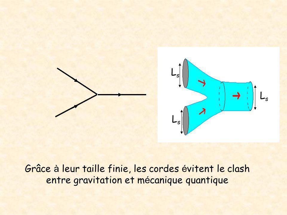 LsLs LsLs LsLs Grâce à leur taille finie, les cordes é vitent le clash entre gravitation et m é canique quantique