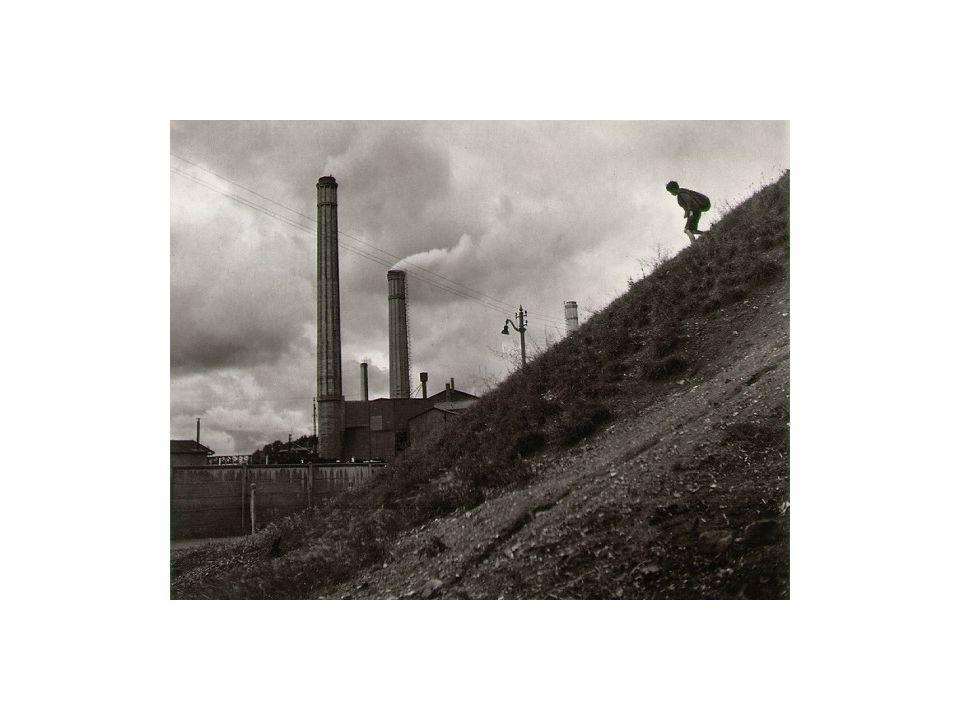 Tragédie des communaux (ou des communs) •Le problème de la surexploitation ne se pose évidemment que si la ressource naturelle est épuisable.