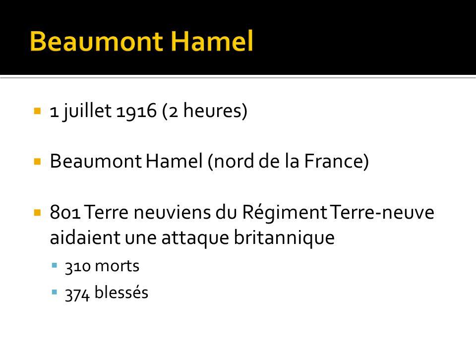  1 juillet 1916 (2 heures)  Beaumont Hamel (nord de la France)  801 Terre neuviens du Régiment Terre-neuve aidaient une attaque britannique  310 m