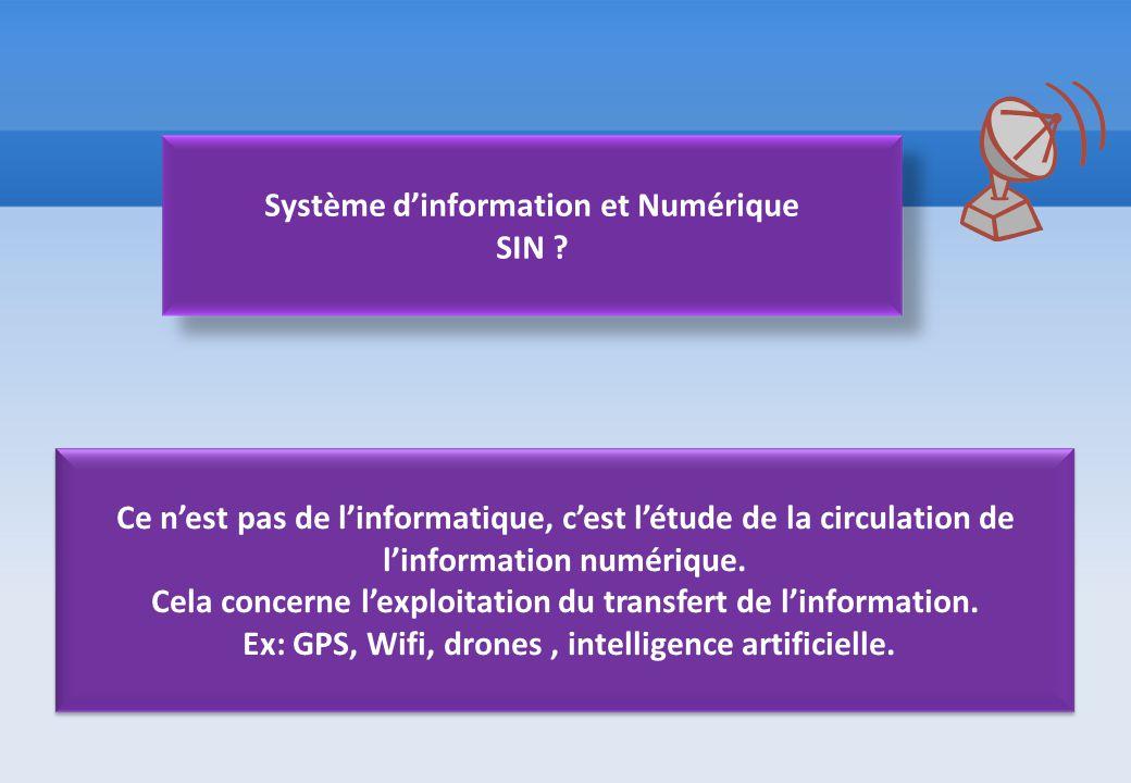 Système d'information et Numérique SIN ? Ce n'est pas de l'informatique, c'est l'étude de la circulation de l'information numérique. Cela concerne l'e