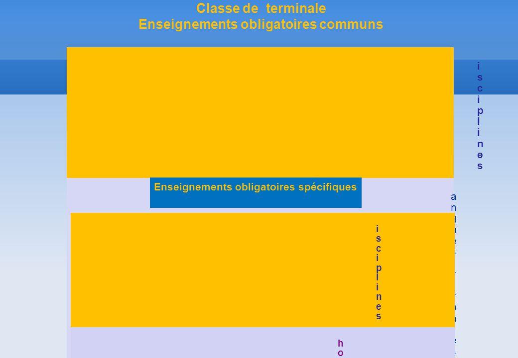 DisciplinesDisciplines HorairesHoraires Langues vivantes 1 et 2 (1)Économie-droitManagement des organisationsÉducation physique et sportive (2)Histoir