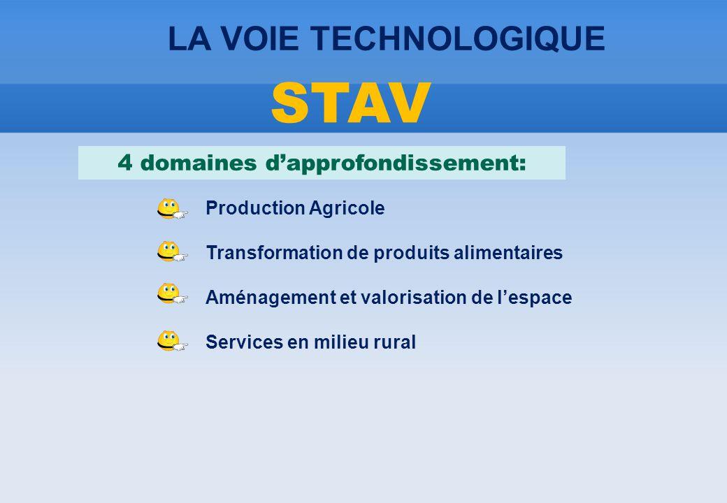 LA VOIE TECHNOLOGIQUE STAV 4 domaines d'approfondissement: Production Agricole Transformation de produits alimentaires Aménagement et valorisation de