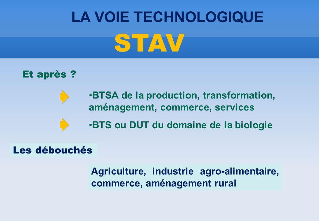 Et après ? •BTSA de la production, transformation, aménagement, commerce, services •BTS ou DUT du domaine de la biologie Les débouchés Agriculture, in