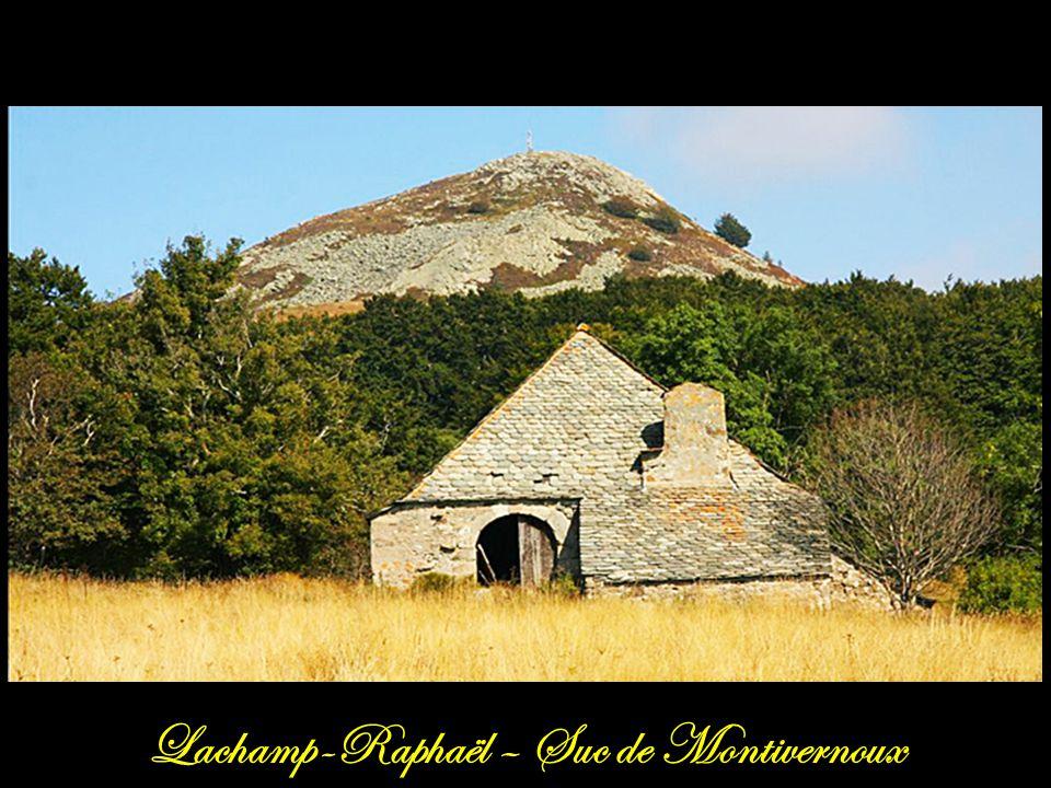 Saint-Martial Le mont Gerbier-de-Jonc, dôme de phonolite daté de 8 millions d'années